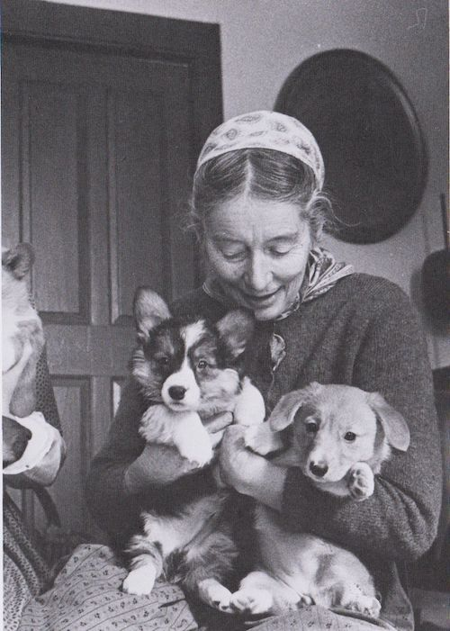 tasha tudor with corgi puppies