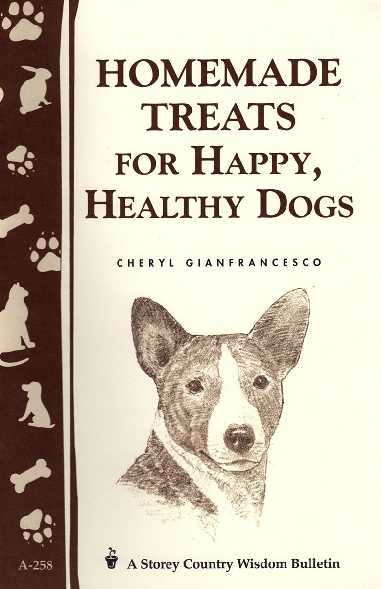 homemade-treats-dogs-front