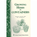growing-herbs-containers-square