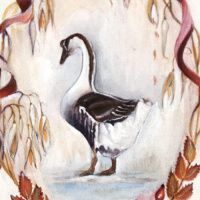 winter-goose-mt-p112-square